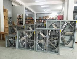 Quạt giải nhiệt công nghiệp có ưu, nhược điểm gì?