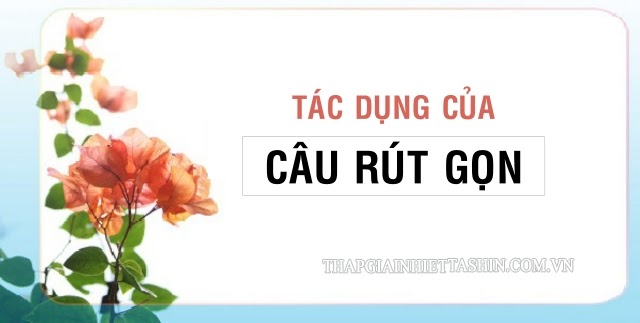 cau-rut-gon-co-tac-dung-gi
